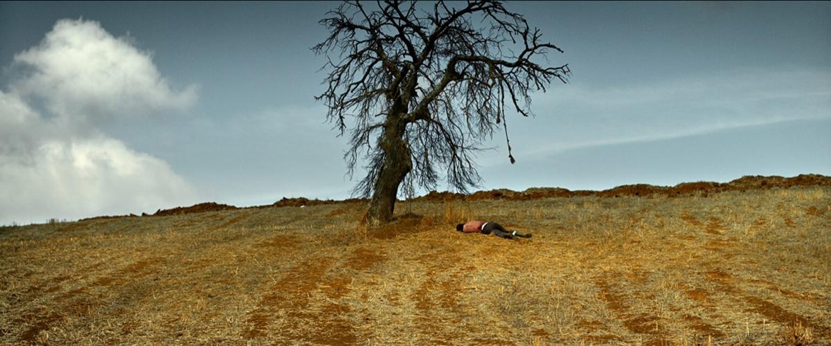 """Nuri Bilge Ceylan'dan Üç Saatlik Bir Şaheser! : """"Ahlat Ağacı"""" / YAŞAM KAYA"""