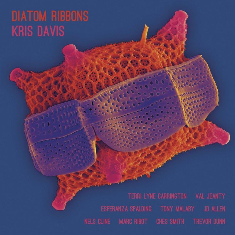 Kris Davis Diatom Ribbons